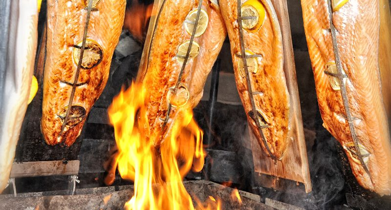Highlight Flammlachs